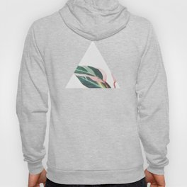 Pink Leaves II Hoody