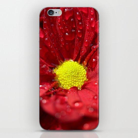 wet bloom I iPhone & iPod Skin