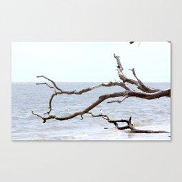 Reaching the Sea Canvas Print