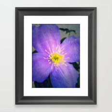 FLOWER N71 Framed Art Print