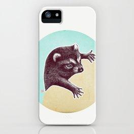 Climbing Raccoon iPhone Case