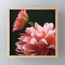 Being Seen Framed Mini Art Print