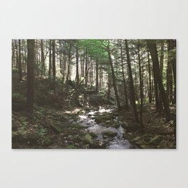 Stevens Glen IV Canvas Print
