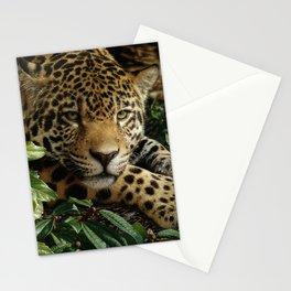 Jaguar - At Rest Stationery Cards