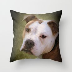 Hunde Augen Throw Pillow