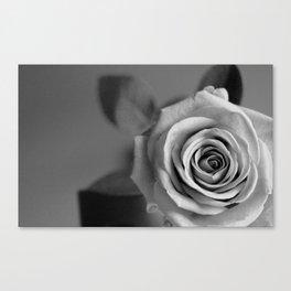 Winter Rose II Canvas Print