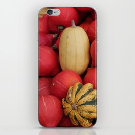 gourds 2, color photo iPhone Skin
