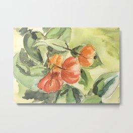 Tropical fruit - Pitanga - Orange and salmon Metal Print