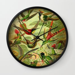 HUMMINGBIRD COLLAGE- Ernst Haeckel Wall Clock