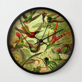 HUMMINGBIRD COLLAGE- Ernst Haeckel Wall Clock