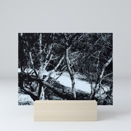 Black and White Contrast Trees Mini Art Print