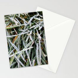 Frosted Grass Stationery Cards