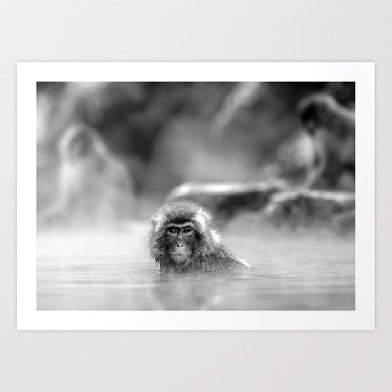 Black and White Macaque at a hot spring Art Print