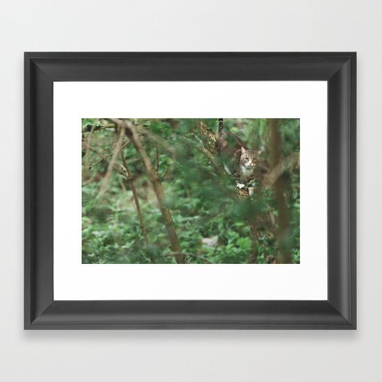 Cat in green Framed Art Print