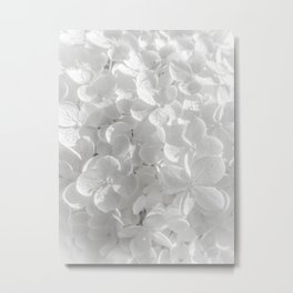 Holy Hydrangea V Metal Print