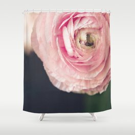 Ranunculus in pink Shower Curtain