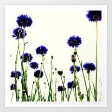 FLOWER 026 Art Print