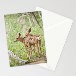Seeing Double Stationery Cards
