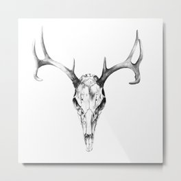Deer Skull in Pencil Metal Print