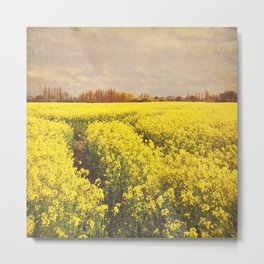 Yellow Field. Metal Print