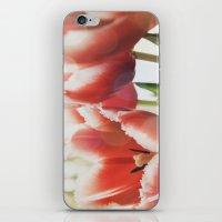fringe iPhone & iPod Skins featuring Fringe by JudyBlue aka Triple Vision Fine Art