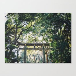 Torii Gate at Meiji Jingu Shrine in Tokyo Canvas Print