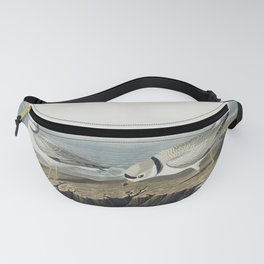 Piping Plover from Birds of America (1827) by John James Audubon etched by William Home Lizars Fanny Pack