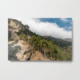 Hillside covered in pine trees Metal Print