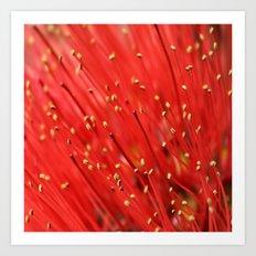 Red  &  Hairy Art Print