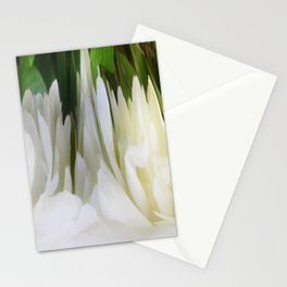 501 - White Peony Abstract Stationery Cards