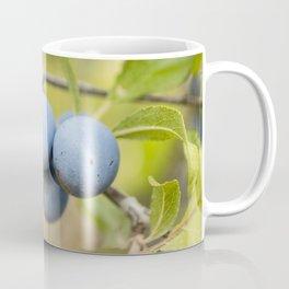 Blue fruits Coffee Mug
