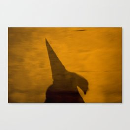 Pointed hood Canvas Print
