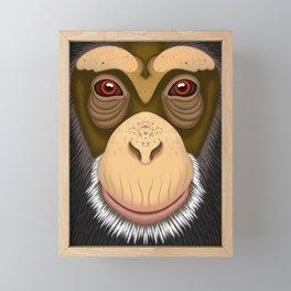 Old Chimpanzee Framed Mini Art Print