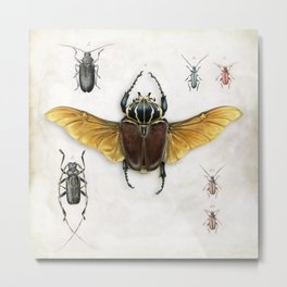 The Vintage Beetles Collection Metal Print