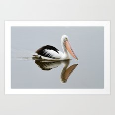A Pelican Reflecting Art Print