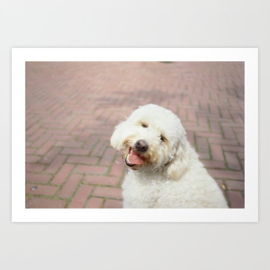 Puppy Doggy Art Print