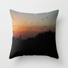 migrating birds Throw Pillow