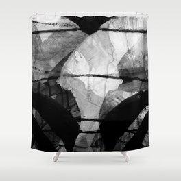 a stark winter morning Shower Curtain