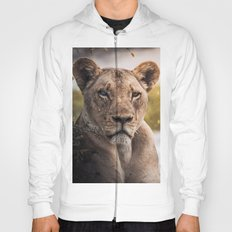 Lion nature Hoody