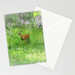Wisconsin Whimsy - Deer in the Phlox Stationery Cards