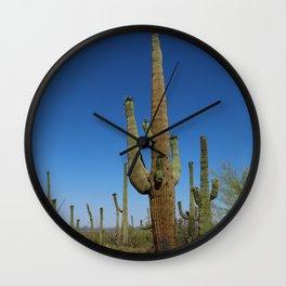 In The Sonoran Desert Wall Clock