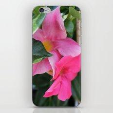Hidden Beauty iPhone & iPod Skin