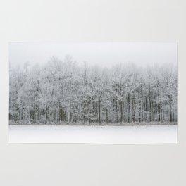 Frozen land Rug