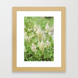 Deer Isle Series: Run Through the Meadow Framed Art Print