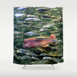 Monster in the Midst Shower Curtain