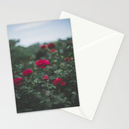 Moody Florals, No. 4 Stationery Cards