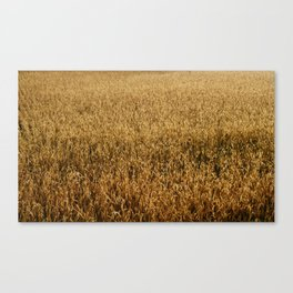 Natural Wealth Canvas Print