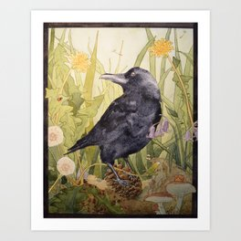 Canuck the Crow Art Print