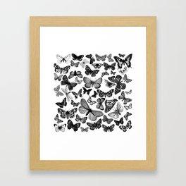 BUTTERFLY CLUSTER MONO Framed Art Print
