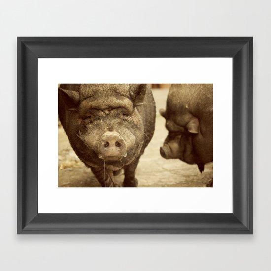 los cerditos de mi tia Framed Art Print